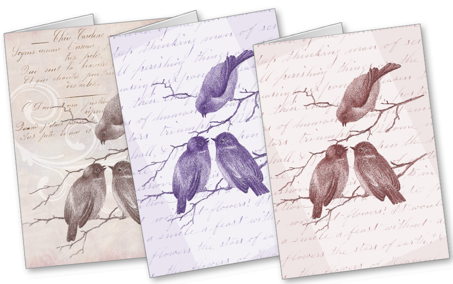 Little Winter Birds Cards